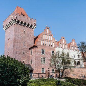 Średniowieczny zamek, powojenna rekonstrukcja czy fantazja architekta? Czym jest poznański zamek? fot.CC BY-SA 2.5 Średniowieczny zamek, powojenna rekonstrukcja czy fantazja architekta? Czym jest poznański zamek?