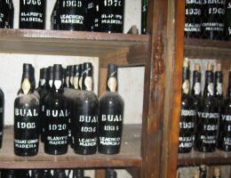 Kolekcja madery