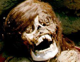 Zmumifikowana głowa kobiety. Fotografia poglądowa.