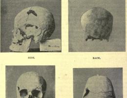 Prawdopodobnie czaszka egipskiego faraona Sanakhty. Nowe badania wskazują na władcę jako na najstarszego znanego w historii olbrzyma.