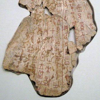 Kość wróżebna z czasów dynastii Shang, pochodząca z ok. 1200 p. n. e. Obecnie znajduje się w National Museum of China.