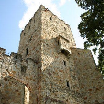 Zamek Tropsztyn, stan na rok 2012.