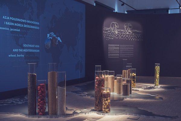 """Wystawa """"Zaczęło się od ziarna..."""". Zdjęcie pochodzi z materiałów prasowych Muzeum Śląskiego."""