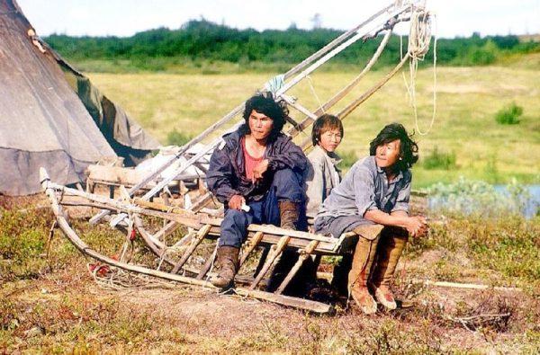 Ludność rdzenna Syberii zamieszkuje do dziś głównie ogromne połacie tajgi i tundry. Narody dzieli się tu najczęściej przyjmując kryterium językowe. Na zdjęciu Nieńcy, jeden z najliczniejszych rdzennych ludów Syberii, prowadzący koczowniczy tryb życia.