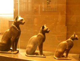 Starożytne egipskie figurki kotów z Muzeum w Luwrze.