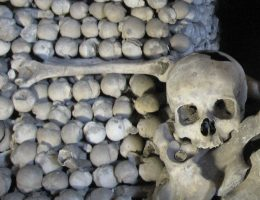 Kości i czaszki w kaplicy kutnohorskiej, obok której dokonano znaleziska.