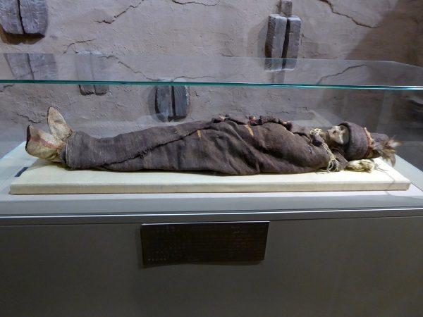 Mumia znaleziona w Azji. (fot. Hiroki Ogawa. lic. CCA 3.0)