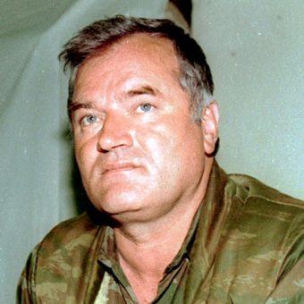 Ratko Mladić (fot. Evstafiev Mikhail, lic. CCA-SA 3.0)