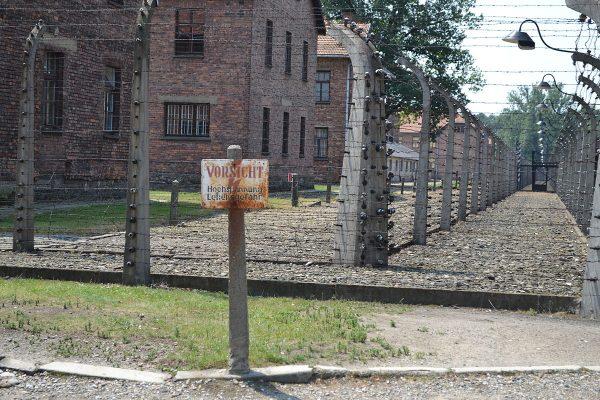 Ogrodzenie Auschwitz na fotografii z 2012 roku.