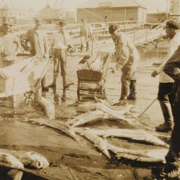 Ożywienie w rosyjskiej gospodarce widoczne było od razu. Na zdjęciu gruzińscy rybacy podczas połowów.