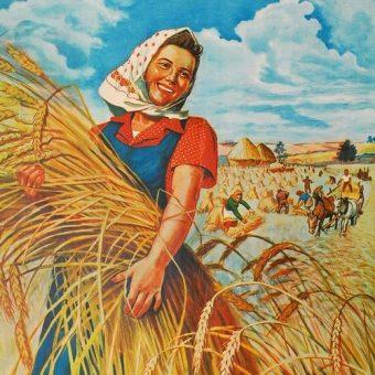Fragment socrealistycznego plakatu z hasłem Damy ojczyźnie więcej chleba