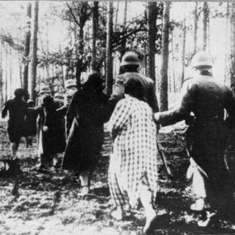 Kobiety prowadzone na egzekucję w Palmirach (fot. domena publiczna).