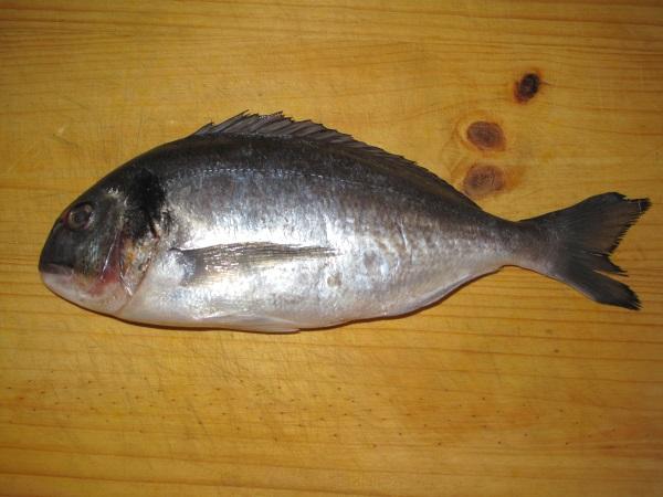 Zapach ryby pozostający na dłoniach, miskach, czy desce do krojenia, to prawdopodobnie jedna z najbardziej uciążliwych woni w przyrodzie. Na szczęście i na to jest sposób. (fot. Dezidor, lic CCA 3.0 U)