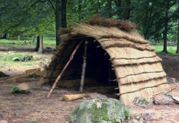 Rekonstrukcja szałasu neolitycznego. Część projektu dotyczącego epoki kamienia w Szwecji. (fot.Bengt Fredriksson, lic. CCA-SA 3.0 U).