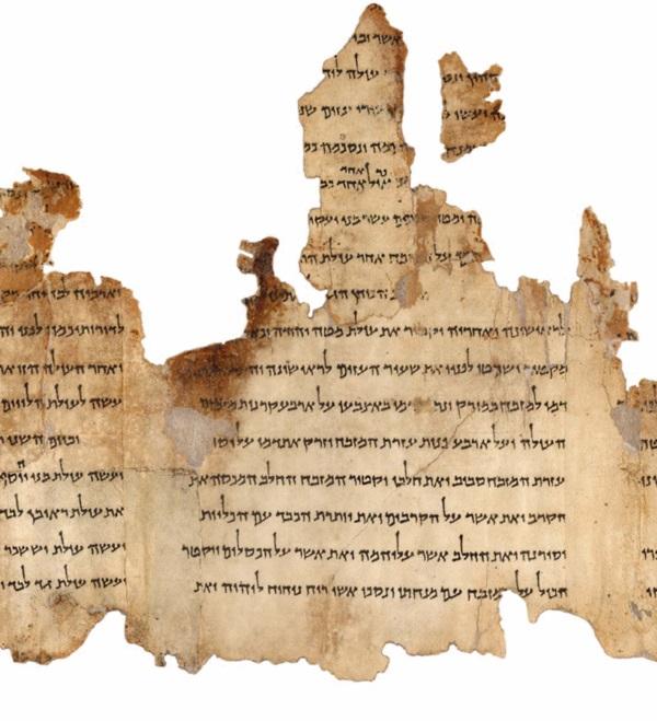 Fragment jednego z najdłuższych zwojów z Qumran (fot. Israel Museum, domena publiczna)
