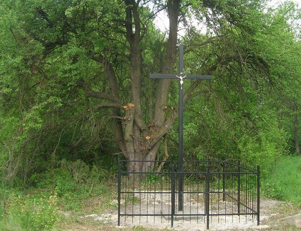 Ważnym źródłem artefaktów były ekshumacje masowych grobów, takich, jakie znajdowały się na przykład w Woli Ostrowieckiej.