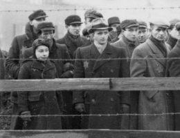 Żydzi za drutami łódzkiego getta (fot. Bundesarchiv, Bild 101I-133-0703-19 Zermin, lic. CC-BY-SA 3.0)