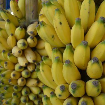 """Banany, podobnie jak cytrusy, stały się za komuny symbolem statusu. Bananowa młodzież były to dzieci osób, które było stać na takie """"ekstrawagancje"""" (fot. Avanysathya, lic. CC0)"""