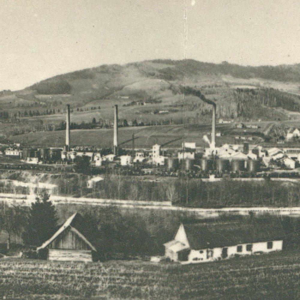 Limanowa, początek lat 20.
