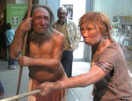 Różne czynniki przesądziły o tym, że homo sapiens wyparli neandertalczyków (fot. UNiesert, lic. CCA-SA 3.0 U)