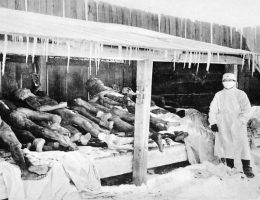 Zdjęcia dokumentujące bestialstwa jednostki 751 (fot. domena publiczna).