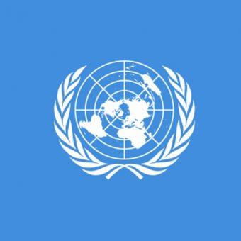 Organizacja Narodów Zjednoczonych zajęła się konfliktem żydowsko-arabskim na terenie Palestyny na wniosek rządu brytyjskiego.