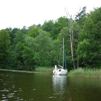 Brzeg mazurskiego jeziora Jeziorak. To nad tym akwenem przebywali Lessmanowie, gdy ich syn znalazł skarb (fot. Marcin n®, lic. CCA SA 2.0)