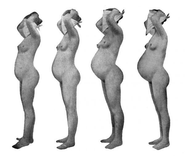 Poszczególne stadia ciąży. Kompilacja fotografii zamieszczonych w Encyklopedii Wiedzy Seksualnej z 1937 roku.