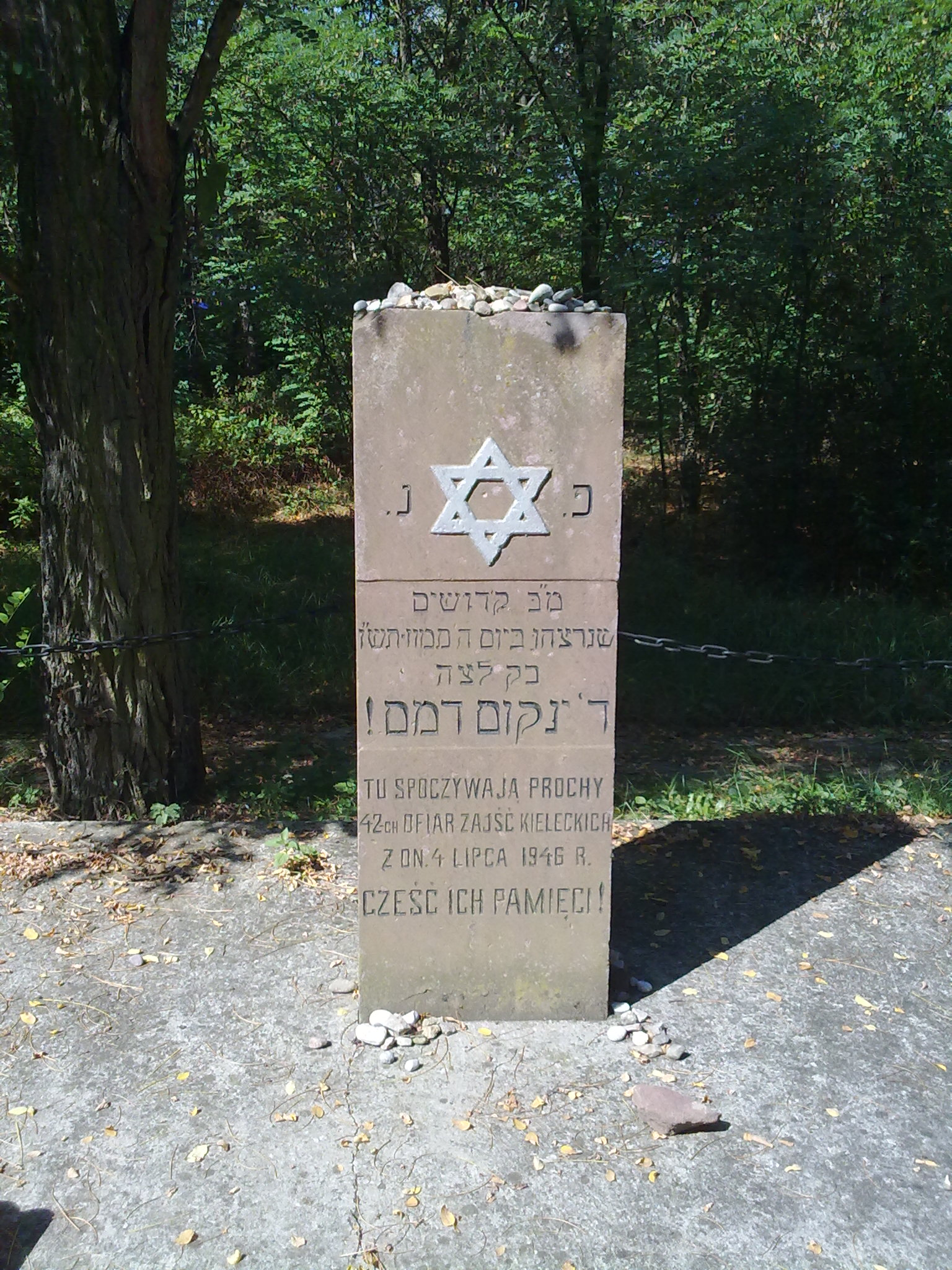 Pogrom kielecki z 4 lipca 1946 roku nie wywołał większych reakcji w Kościele Katolickim. Grób ofiar pogromu na kieleckim cmentarzu żydowskim.