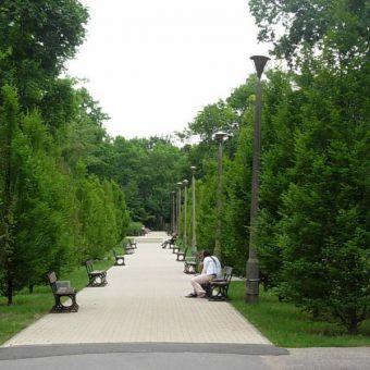 Park Witosa w Bydgoszczy (fot. Pit1233, lic. CC0)