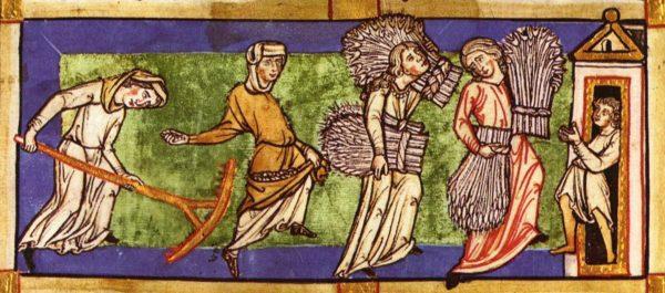 """W XIII wieku wielu chłopów pańszczyźnianych miało do dyspozycji także """"wolne"""" grunta, a chłopom wolnym zdarzało się gospodarować na ziemi pańszczyźnianej."""