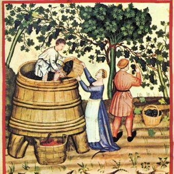 Tłoczenie wina w średniowieczu.
