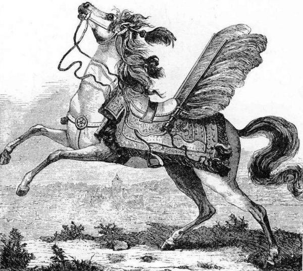 """Zanim husarski koń wziął udział w bitwie przechodził długoletnie szkolenie. Na ilustracji wyobrażenie konia husarskiego z """"Encyklopedii staropolskiej""""."""