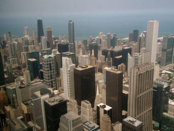 Do wybudowania drapaczy chmur w Chicago przyczyniła się... krowa.