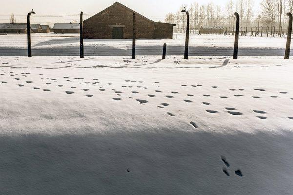 Obchody 72. rocznicy wyzwolenia obozu Auschwitz, 27 stycznia 2018 (fot. domena publiczna)
