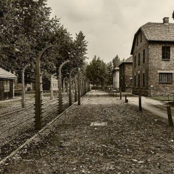 Teren obozu Auschwitz-Birkenau (fot. peter89ba, lic. CC0)