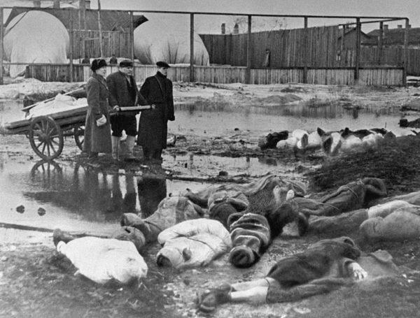 Podczas oblężenia Leningradu życie straciło być może nawet 2 miliony ludzi.