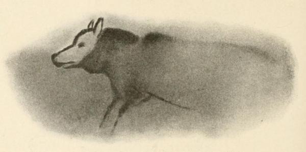 Wizerunki psów znaleziono wśród malowideł ściennych w jaskiniach (na akwareli archeolog Henri Breuil odtworzył rysunki z francuskiej jaskini Font-de-Gaume sprzed 19 tysięcy lat.