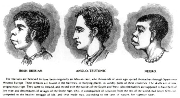 """Pseudorasistowskich teorii używano, żeby poniżyć swoich przeciwników, na przykład poprzez ukazanie podobieństwa Irlandczyków do przedstawicieli """"niższej"""" czarnoskórej rasy."""