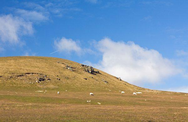 Profesor Pearson przypuszcza, że pierwotnie krąg Stonehenge stał na wzgórzach Preseli, być może nieopodal stanowiska Banc Du (na zdj.).