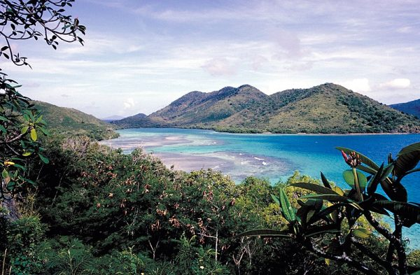 Do niezwykłych wniosków doprowadziły badaczy znaleziska odkryte na wyspie Saint Thomas.