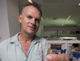 Geoffrey Clark z The Australian National University trzyma grzebień do tatuażu liczący 2700 lat (fot. Jack Fox, Australian National University )