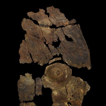 Fragment odnalezionej tarczy (fot. University of Leicester Archaeological Services (ULAS)