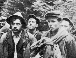"""Wśród osób, których nazwiska ujawnił IPN, znajdują się zarówno żołnierze wyklęci, jak i Polacy pomordowani przez UPA (na zdj. członkowie sotni """"Bira"""" UPA ujęci przez żołnierzy Ludowego Wojska Polskiego w rejonie Zatwarnicy jesienią 1946 roku)."""