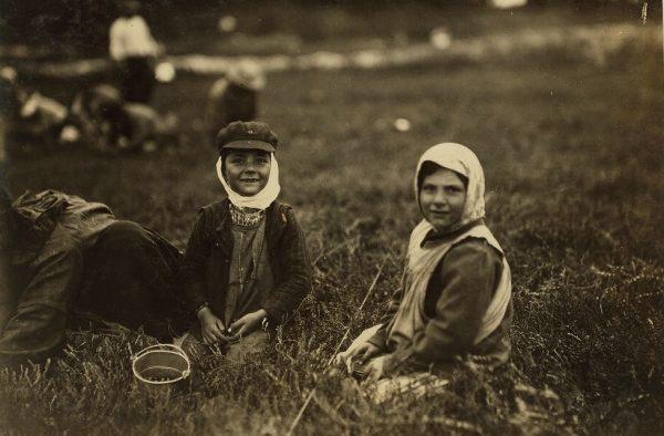 Najmłodszych często zatrudniano w sezonie do pracy w polu. Zdjęcie poglądowe.