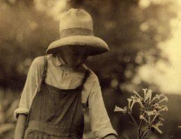 Dzieci pracowały nie tylko w fabrykach i kopalniach, ale także w gospodarstwach. Zdjęcie poglądowe.