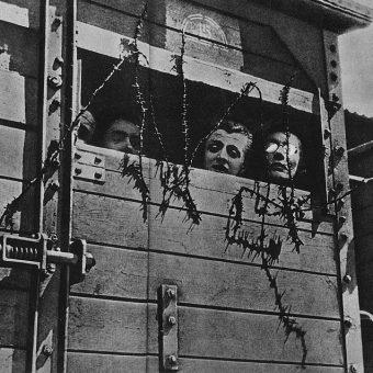 """Akcja """"Reinhardt"""". Żydzi w wagonie towarowym w drodze do obozu zagłady."""