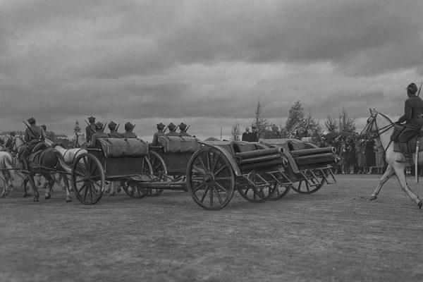 Potrzeba było 750 armat dla artylerii polowej, dla ciężkiej 50 armat i 220 haubic, dla konnej 80 armat, a dla górskiej 30. Razem daje to zawrotną liczbę 1130 dział.