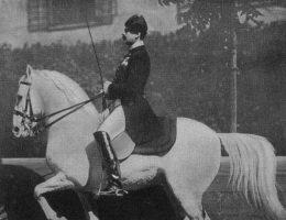 Dzięki żmudnej selekcji i krzyżowaniu ras stworzono, przynajmniej według Habsburgów, konia doskonałego