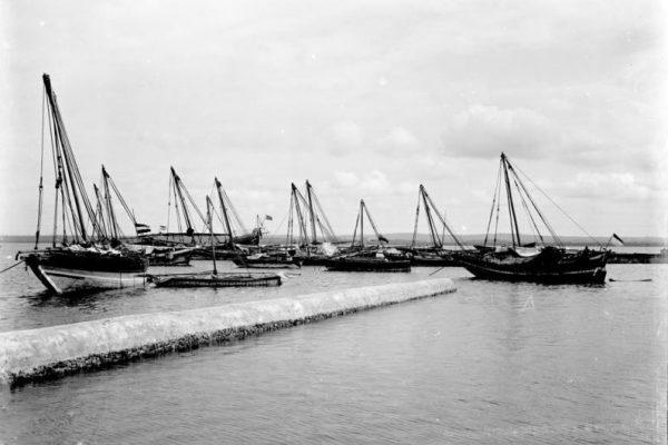 Jej celem miał być najważniejszy port w Niemieckiej Afryce Wschodniej – Tanga.